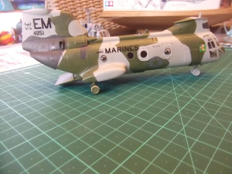 CH-46 Dscf3339
