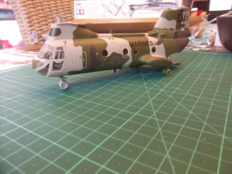 CH-46 Dscf3340