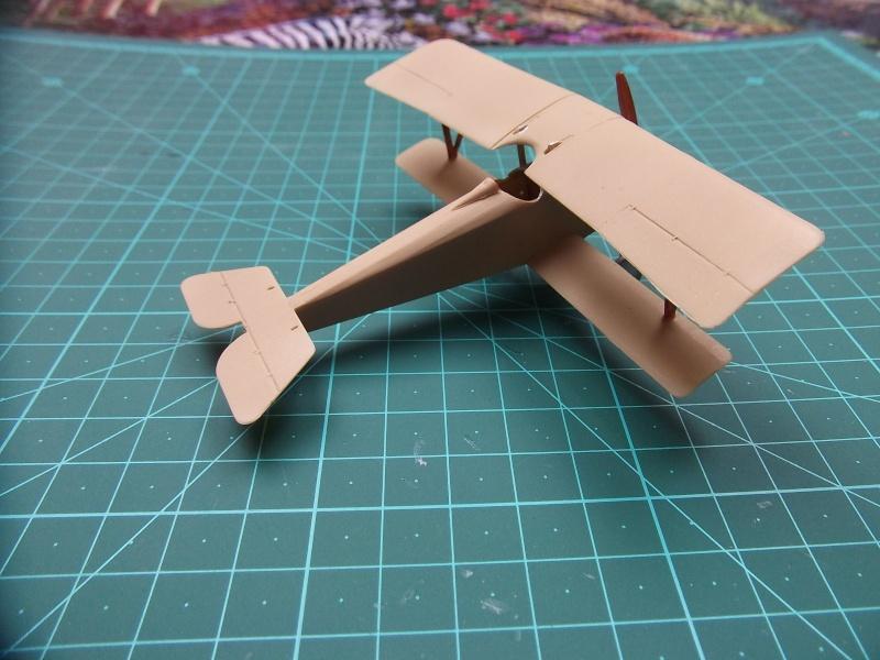 Nieuport Ni 10 Dscf3429