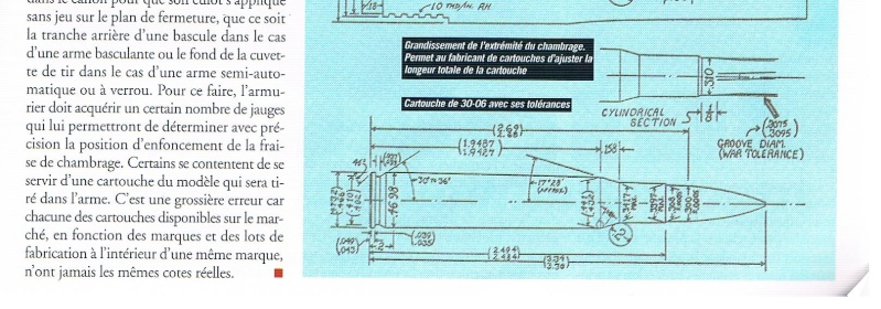 choix de munition  - Page 3 Cartou10