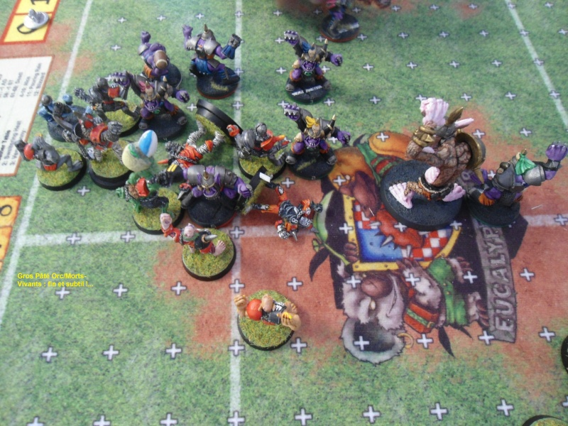 "Le Blood Bowl ""Down Under"" et ""Up Above"" - Page 2 003_co10"