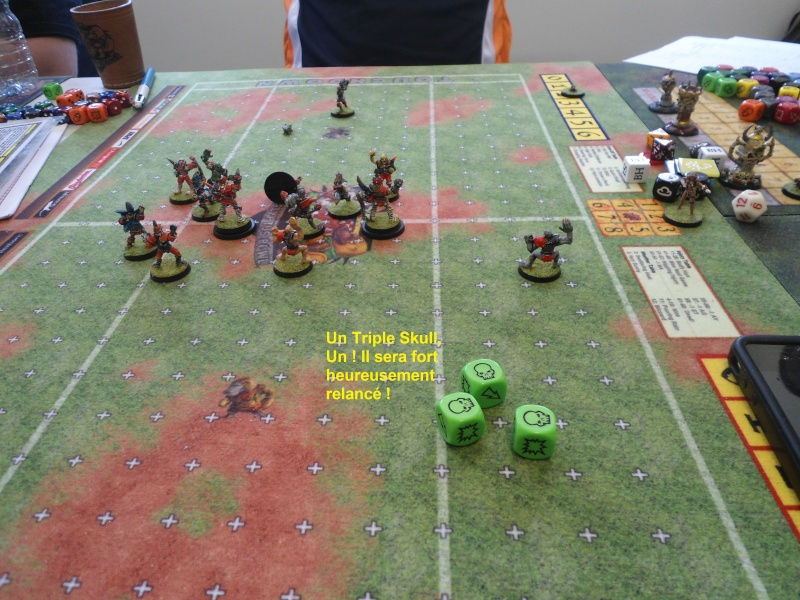 "Le Blood Bowl ""Down Under"" et ""Up Above"" - Page 2 Dsc00910"