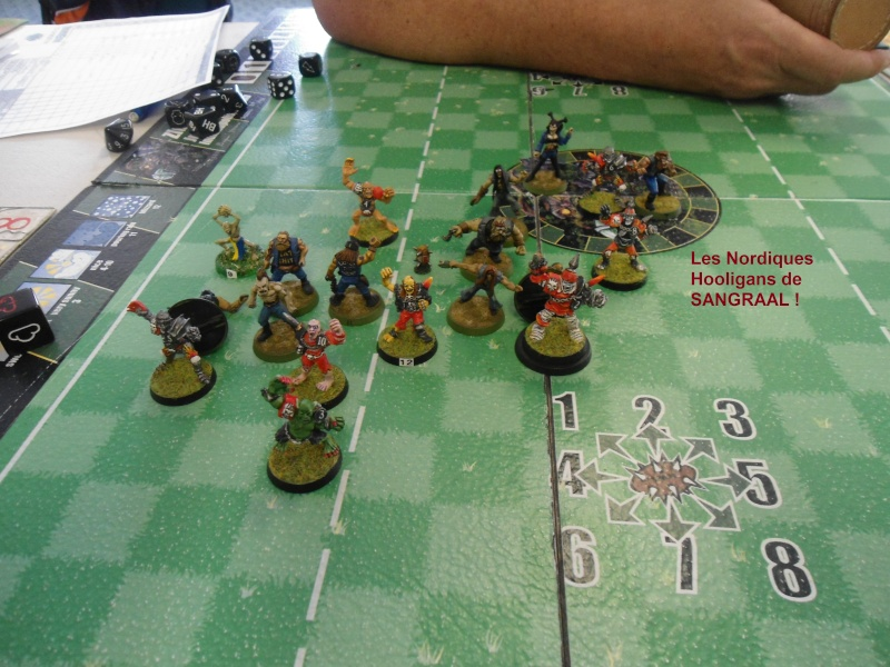 "Le Blood Bowl ""Down Under"" et ""Up Above"" - Page 2 Dsc00911"