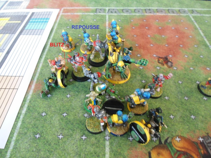 "Le Blood Bowl ""Down Under"" et ""Up Above"" - Page 2 Dsc00912"