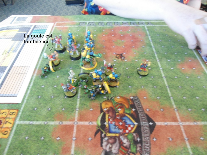 "Le Blood Bowl ""Down Under"" et ""Up Above"" - Page 2 Dsc00913"