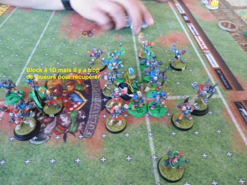 "Le Blood Bowl ""Down Under"" et ""Up Above"" - Page 2 Dsc00914"