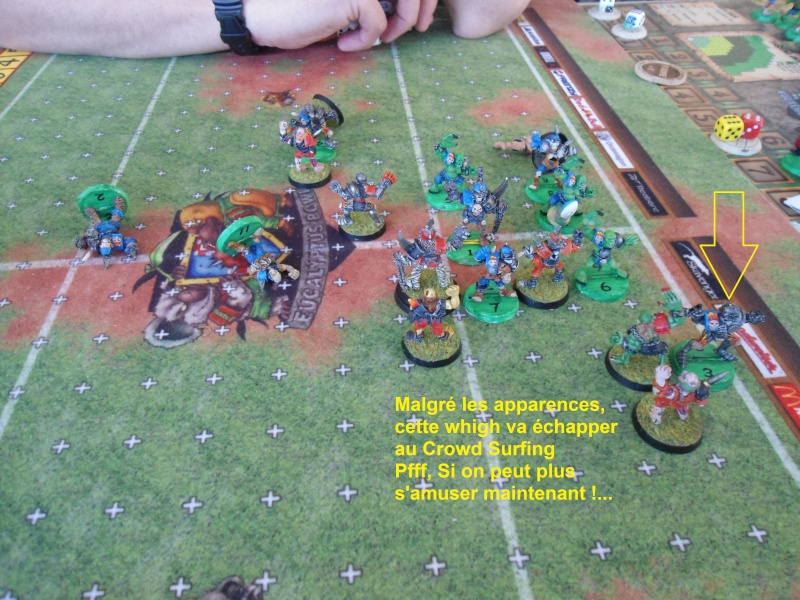 "Le Blood Bowl ""Down Under"" et ""Up Above"" - Page 2 Dsc00915"