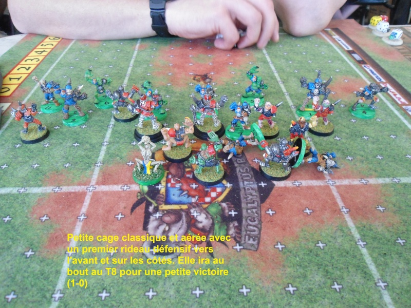 "Le Blood Bowl ""Down Under"" et ""Up Above"" - Page 2 Dsc00916"