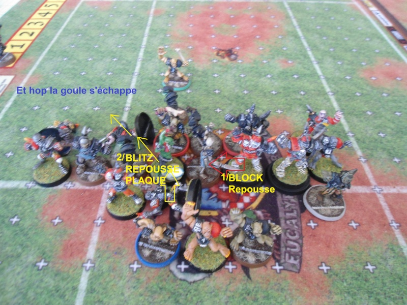 "Le Blood Bowl ""Down Under"" et ""Up Above"" - Page 3 Dsc01010"
