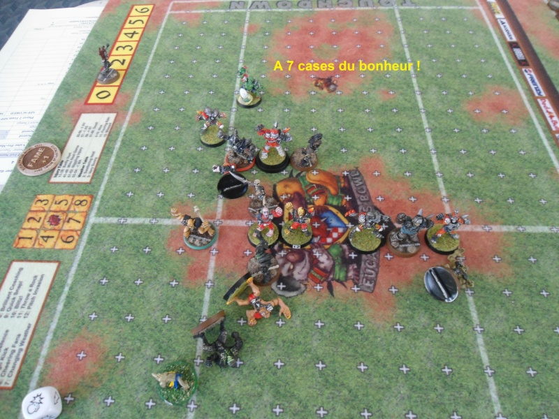"Le Blood Bowl ""Down Under"" et ""Up Above"" - Page 3 Dsc01011"