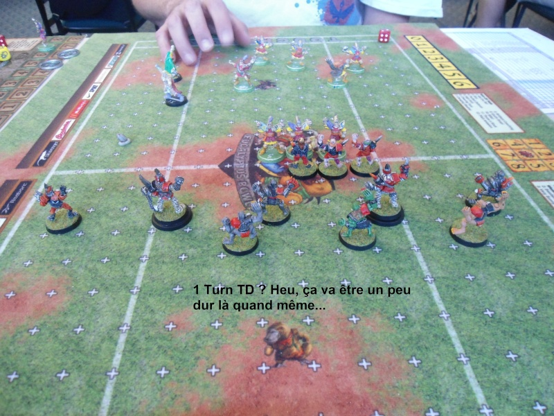 "Le Blood Bowl ""Down Under"" et ""Up Above"" - Page 3 Dsc01013"