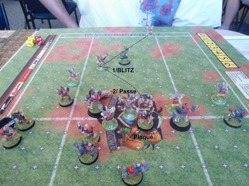 "Le Blood Bowl ""Down Under"" et ""Up Above"" - Page 3 Dsc01014"