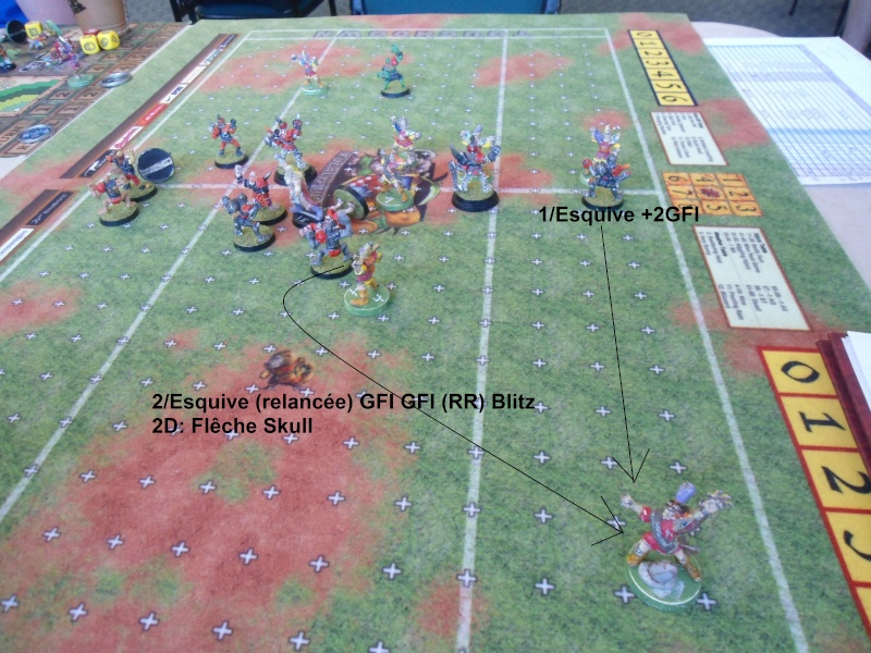 "Le Blood Bowl ""Down Under"" et ""Up Above"" - Page 3 Dsc01015"