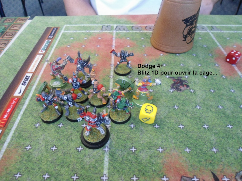 "Le Blood Bowl ""Down Under"" et ""Up Above"" - Page 3 Dsc01016"