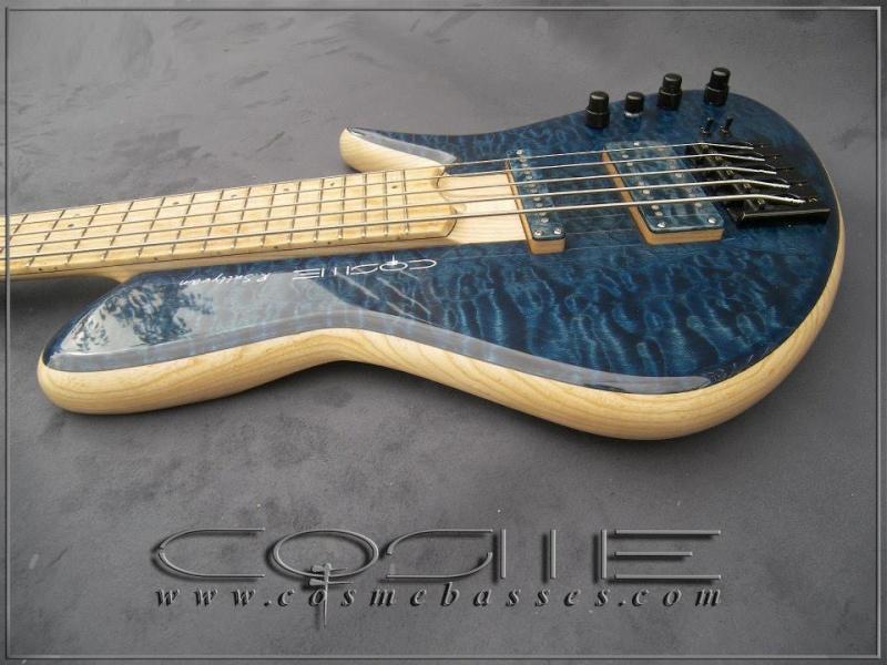 nouveau modèle Patrick COSME 13953810