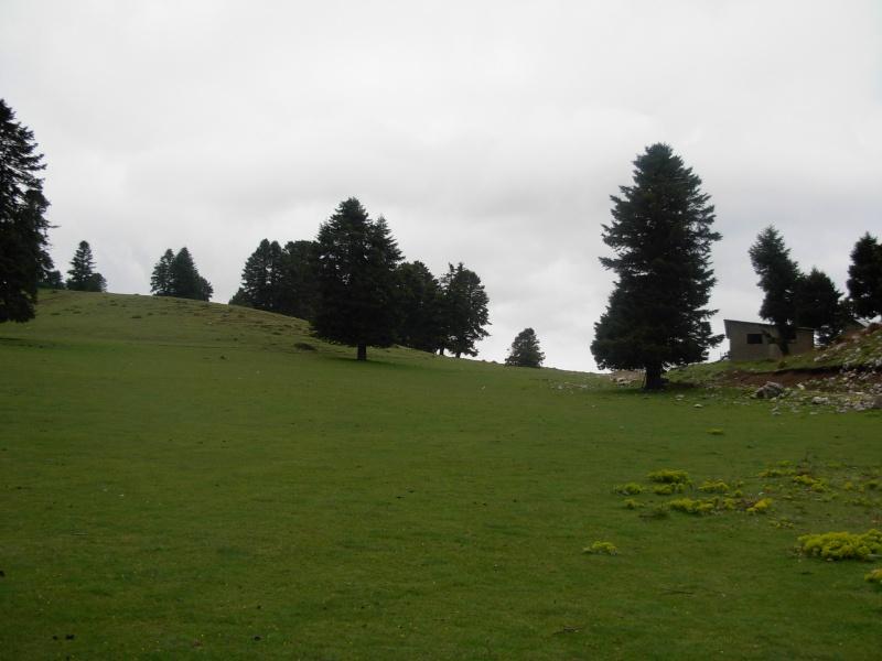 Οροπέδιο στο Αστρί Dscn0218