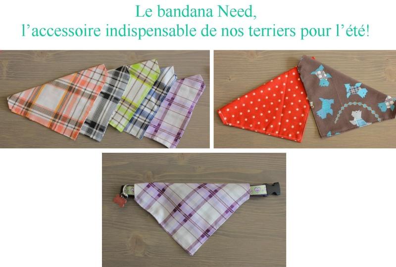 Bandanas pour terriers - Page 2 Bandan10