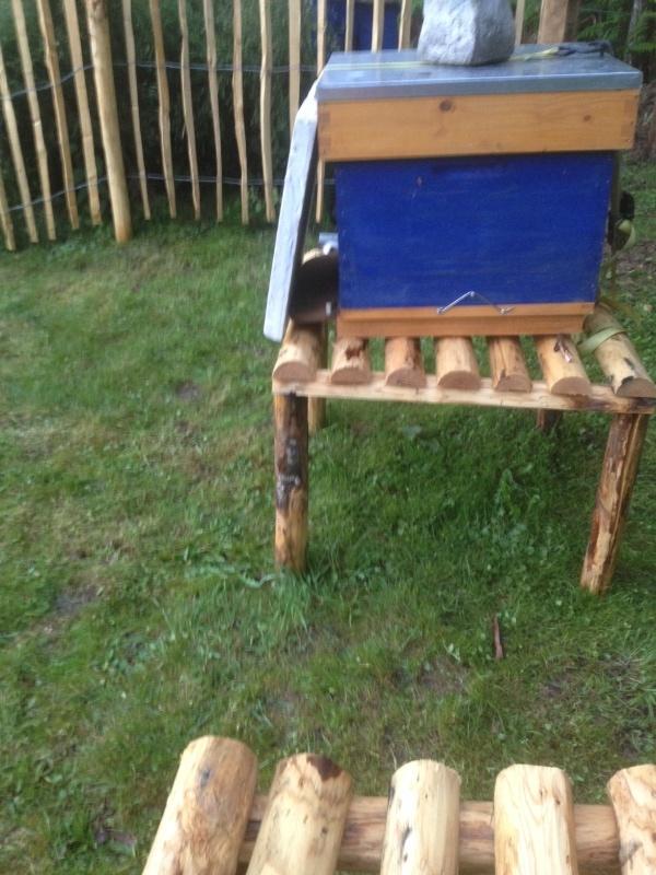 J'ai pas envie de déplacer mes ruches... Photo_10
