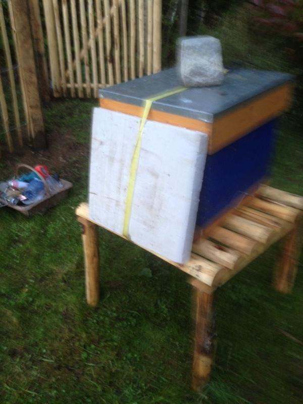 J'ai pas envie de déplacer mes ruches... Photo_11