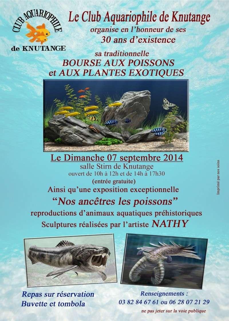 Bourse à Knutange (dépt57) - Dimanche 7 septembre 2014 Affich11