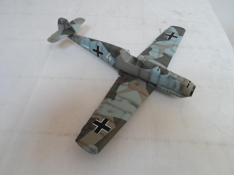 """BF 109 E-3 """" Eduard """" 1/32 Sam_1514"""