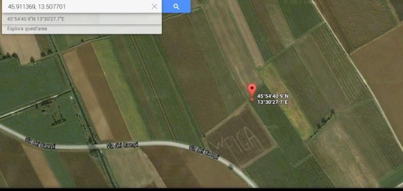 Crop circle : l'ultimo scioccante messaggio alieno nel Nord Italia Figa10