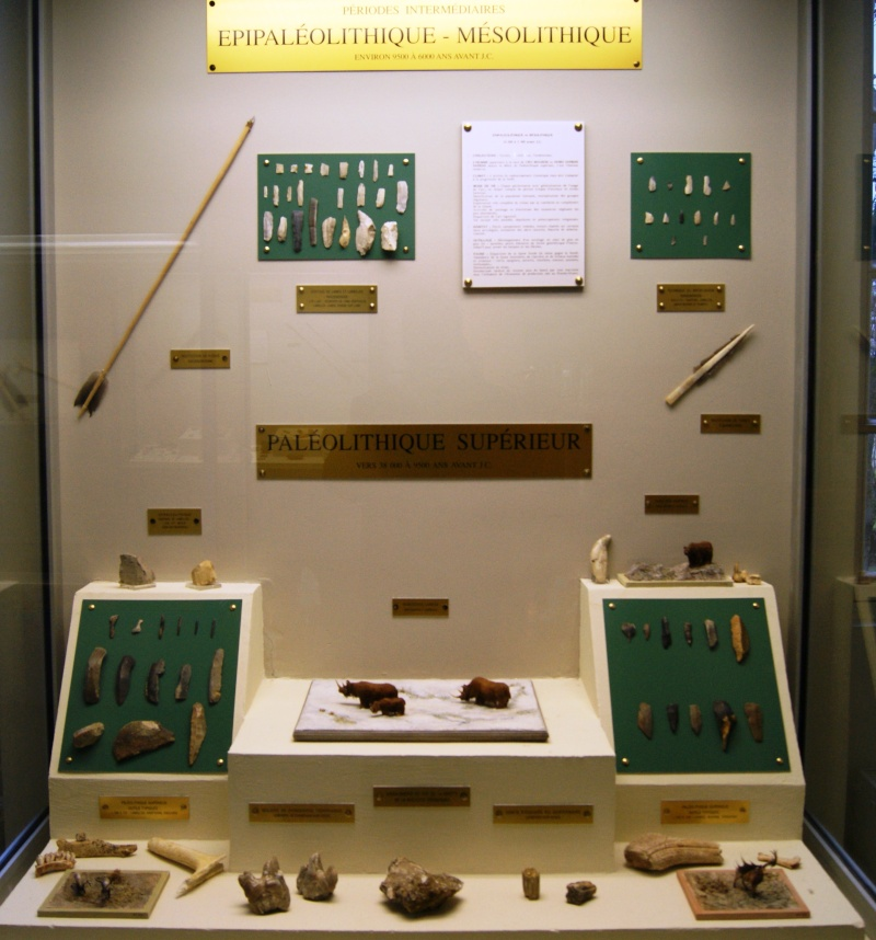 Le musée Saint-Rémi de Reims Dsc01711