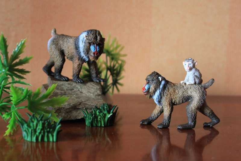 SCHLEICH 2014 JLJ Additions Schlei13