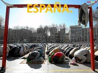 EUROPA VS. ISLAM - Página 4 Puerco10
