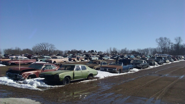 huge classic car junkyard Flsalv10