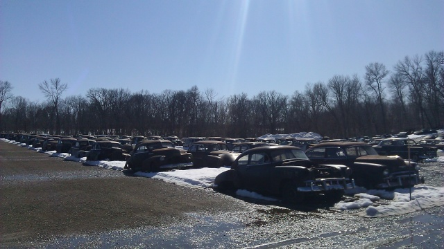 huge classic car junkyard Flsalv11