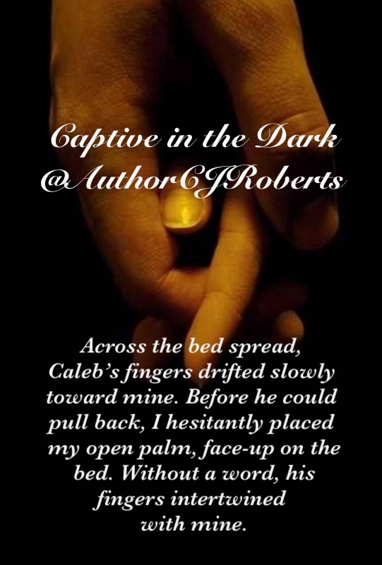 ROBERTS CJ - THE DARK DUET - Tome 1 : Captive in The Dark 20130210