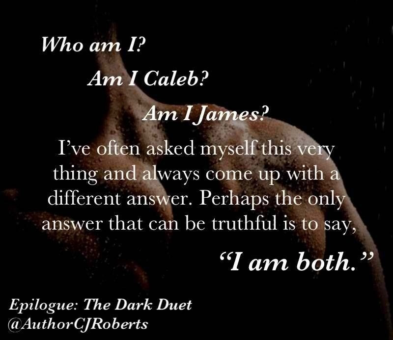 ROBERTS CJ - THE DARK DUET - Tome 1 : Captive in The Dark 20130911