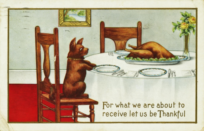 Thanksgiving - Page 3 7498c210