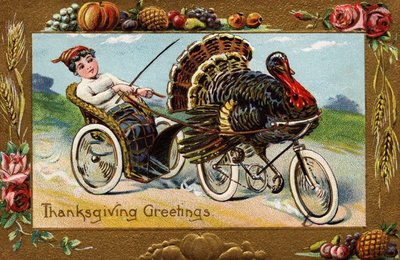 Thanksgiving - Page 3 Ab099510