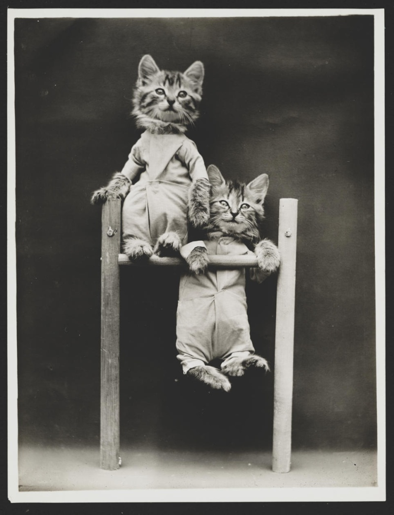 Vintage pictures - Page 5 Efb1ba10