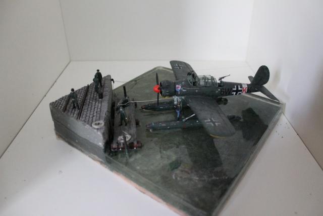 Arado Ar 196A  1/72 Img_9352