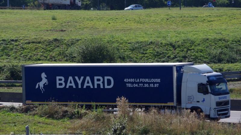 Bayard (La Fouillouse, 42) Imgp5614