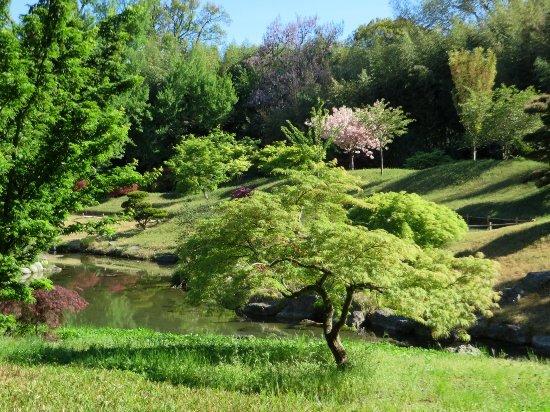 (30) La Bambouseraie d'Anduze - FJ2014 Avril_34