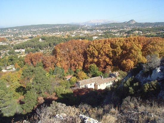 Les platanes et autres arbres vénérables chez Claire Octobr12