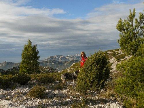 Les calanques - paysages et flore P1280812