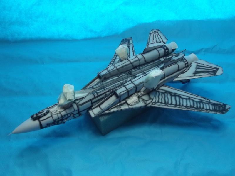 F14D super tomcat Dscf6011