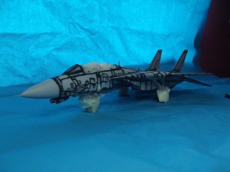 F14D super tomcat Dscf6012