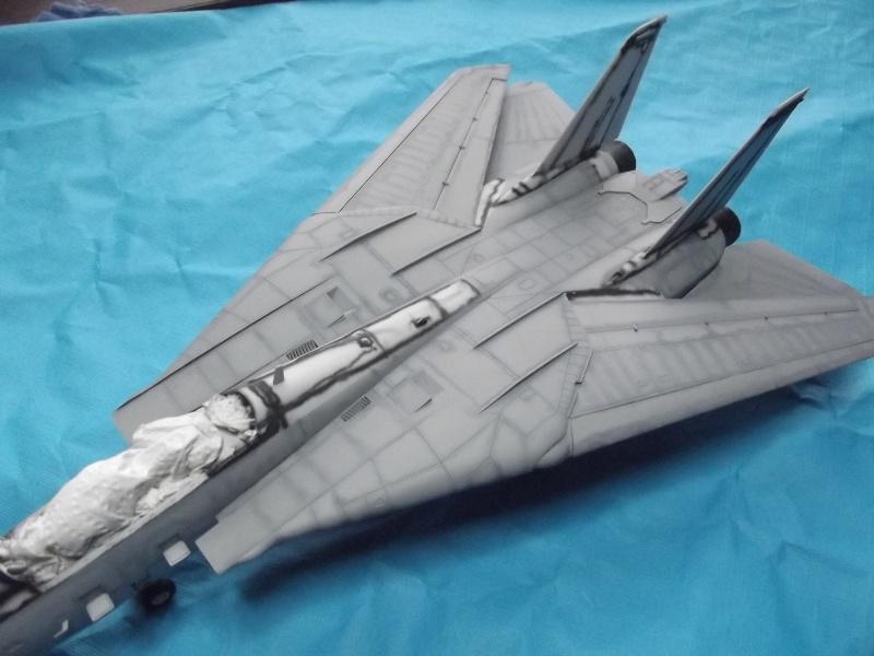 F14D super tomcat Dscf6013