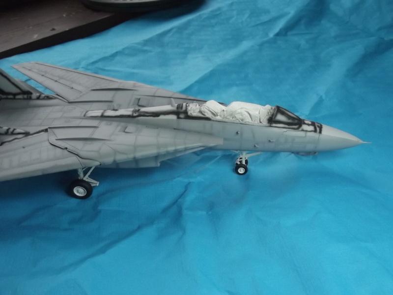 F14D super tomcat Dscf6015