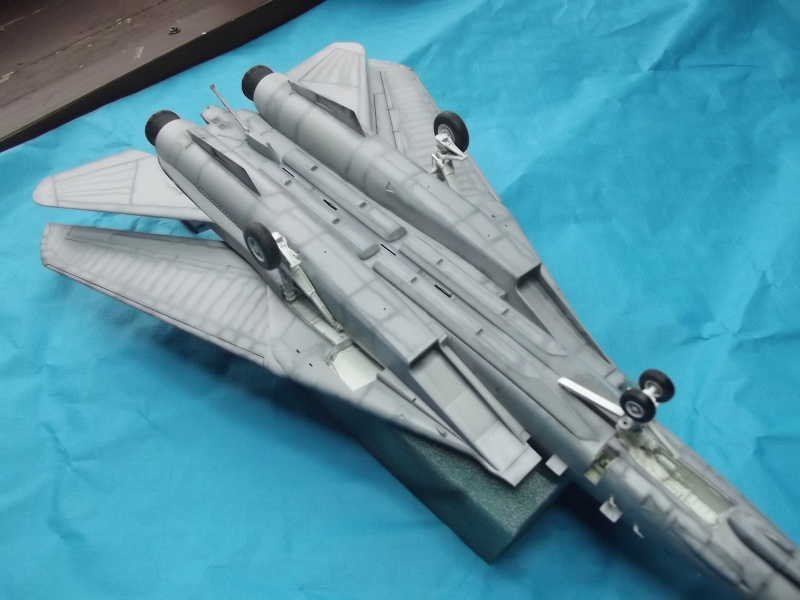 F14D super tomcat Dscf6017