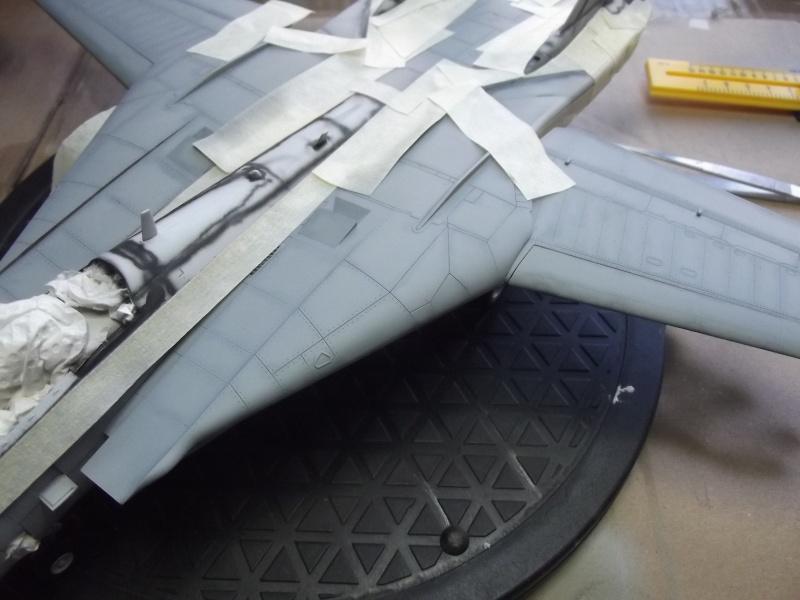 F14D super tomcat Dscf6018