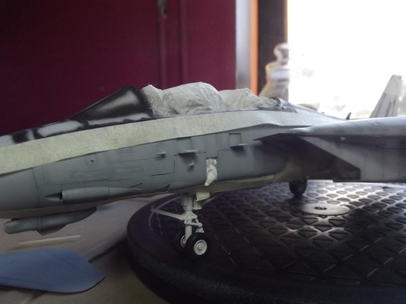F14D super tomcat Dscf6019