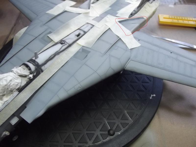 F14D super tomcat Dscf6021