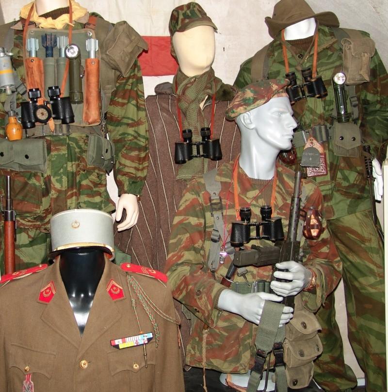 Armée française de l'Indochine à l'Algérie militaria Dsc08110